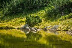 A beautiful, clean lake in the mountain valley in calm, sunny day. Mountain landscape with water in summer. Tatry mountains in Slovakia, Europe royalty free stock photography