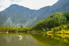 A beautiful, clean lake in the mountain valley in calm, sunny day. Mountain landscape with water in summer. Tatry mountains in Slovakia, Europe stock photo