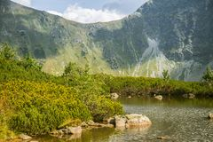 A beautiful, clean lake in the mountain valley in calm, sunny day. Mountain landscape with water in summer. stock images
