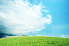 Beautiful Clean Landscape. A clean and sunny landscape Royalty Free Stock Images