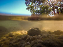 Beautiful clear water at key west florida Stock Photography