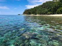 Beautiful clear water and reef  in the sea of raja ampat archipelago. Papua stock photo