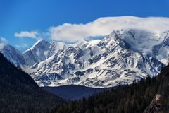 Beautiful close up glacier mountains. Somewhere deep within Altai mountains, Russia Royalty Free Stock Images