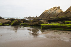 Beautiful close up on rocks on sandy volcanic azkorri beach near bilbao on spanish atlantic coast in basque country, spain Royalty Free Stock Images