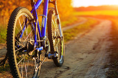 Beautiful close up scene of bicycle at sunset, Royalty Free Stock Image