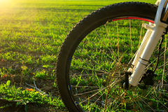 Beautiful close up scene of bicycle at sunset, Stock Images