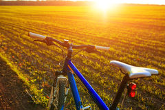 Beautiful close up scene of bicycle at sunset, Royalty Free Stock Photo