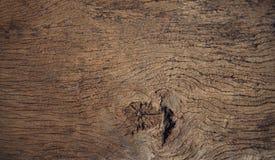 Beautiful close up textured of bark wood use as multipurpose nat royalty free stock photo