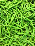 Closeup detailed view of bright green appetizing, fresh beans, food healthy background Royalty Free Stock Image