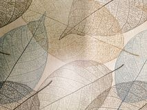 Beautiful closeup textures abstract wall stone and tile floor background