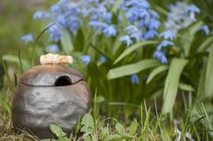 Beautiful closeup of unique handmade pot with wooden detail and Siberian Squill on background. Beautiful closeup of unique handmade pot with wooden detail for Stock Photography