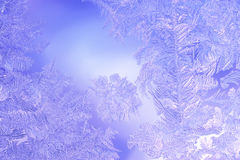 Beautiful Closeup Winter Colorful Background With Icy Frost Patterns Royalty Free Stock Photography