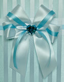 Beautiful cloth bow Royalty Free Stock Photo