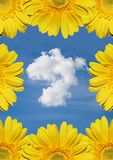 Beautiful cloud with flowers Royalty Free Stock Photos