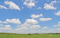 Beautiful cloud sky Royalty Free Stock Photography
