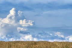 Beautiful clouds and field. Massive towering cumulus clouds over the hill with wheat's straw Stock Photography