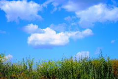 Beautiful clouds float above the grass Royalty Free Stock Photography