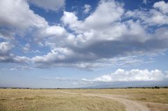 Beautiful clouds and open Grassland of Ol Pejeta Conservancy, Kenya Stock Photography