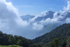 Beautiful clouds in the tea plantations in the mountains. Of India stock photo