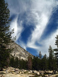 Beautiful clouds and trees in the Sierra Nevadas Royalty Free Stock Photo