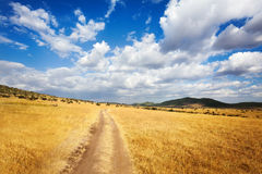 Beautiful cloudscape over arid African savannah Royalty Free Stock Photography