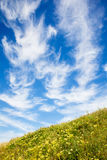 Beautiful cloudscape over green meadow Royalty Free Stock Photo