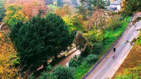 A beautiful cloudy fall day in Peitruss Valley in Luxembourg City. Surrounded by fall foliage. Locals are enjoying their walks in the calm morning dew. This stock photo
