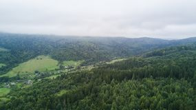 Beautiful cloudy green mountain landscape with trees in Carpathians stock photography