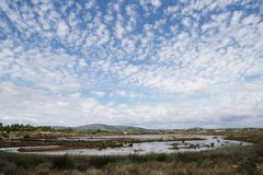Marshes in the nature reserve Ria Formosa Royalty Free Stock Image