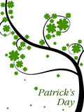 A beautiful clover tree on white background. Stock Image