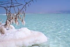 Beautiful coast of the Dead Sea . Stock Images