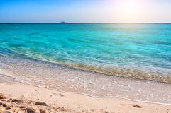 Beautiful coast on the island in the Red Sea Stock Photography