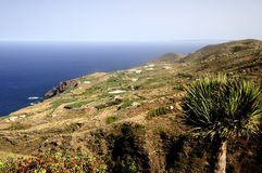 Beautiful coast of La Palma. Landscape on the island of La Palma, Canary Islands Stock Photos