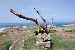 Beautiful coast landscape Royalty Free Stock Images
