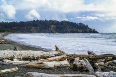 Beautiful coast line of La Push in Clallam County Washington - FORKS - WASHINGTON. Beautiful coast line of La Push in Clallam County Washington Royalty Free Stock Images
