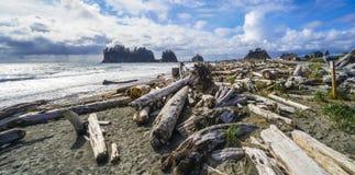 Beautiful coast line of La Push in Clallam County Washington - FORKS - WASHINGTON. Beautiful coast line of La Push in Clallam County Washington Stock Images