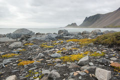 Beautiful coast Stokksnes with view to the Atlantic ocean and mountains, East Iceland Royalty Free Stock Images