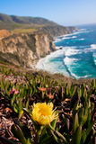 Beautiful Coastline along the Pacific in Big Sur,California Royalty Free Stock Images