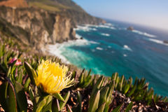 Beautiful Coastline along the Pacific in Big Sur,California Stock Image