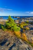 Beautiful coastline of Baltic sea. Sweden Royalty Free Stock Photos