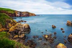 Beautiful coastline in St Abbs of Scotland in UK Stock Photos