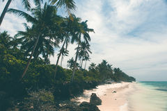 Beautiful coastline, turquoise view of the sea with palm trees, Royalty Free Stock Photography