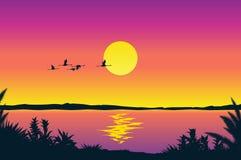 Beautiful coastline view. Beautiful tropical coastline – vector illustration stock illustration