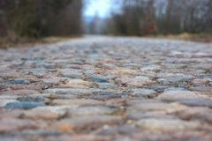Beautiful cobbled road near the forest. Image for the background stock photos