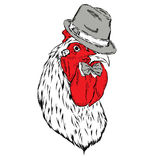Beautiful cock in a hat and tie. Vector illustration. Beautiful cock in a hat and tie Royalty Free Stock Photography