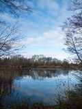 Beautiful cold lake scene autumn branches water surface reflecti Stock Image