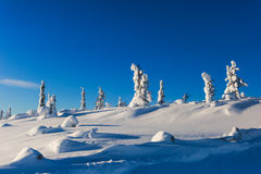 Beautiful cold mountain view of ski resort, sunny winter day wit Royalty Free Stock Photography