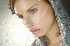 Beautiful cold winter women. Portrait of a beautiful cold winter women royalty free stock image