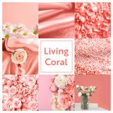 Beautiful collage with living coral color. Stylish design stock photos