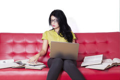 Beautiful college student studying on the couch Royalty Free Stock Photo